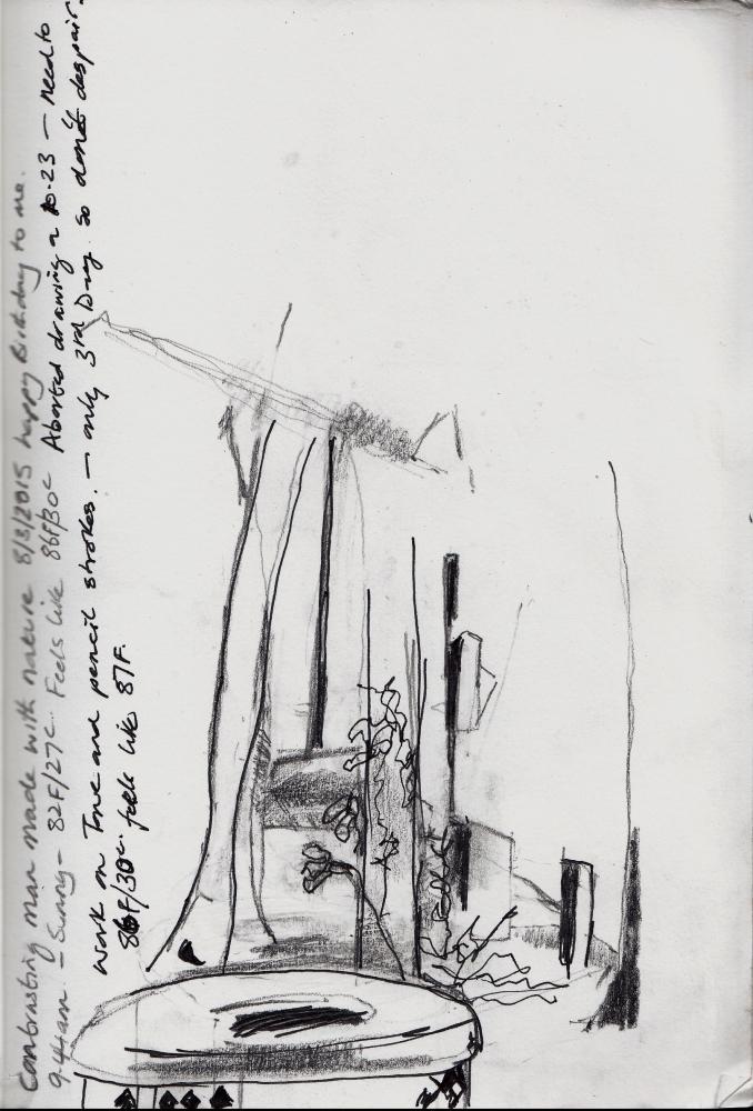 Foliage and drawing (2/4)
